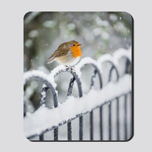 Robin in the Snow Mousepad