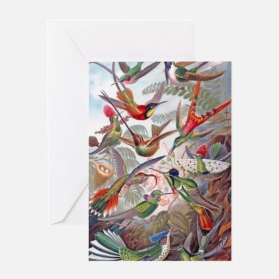 42X28 BANNER Exotic Hummingbirds 19t Greeting Card