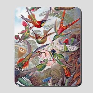42X28 BANNER Exotic Hummingbirds 19th C  Mousepad