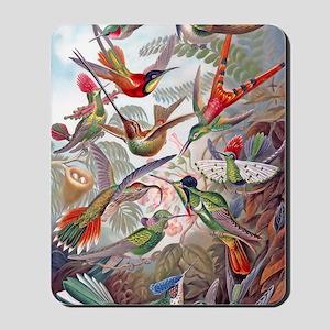 23x35 Hummingbird Poster Mousepad
