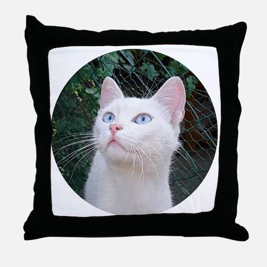 Klea Throw Pillow