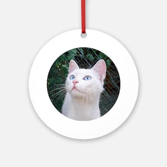 Klea Round Ornament