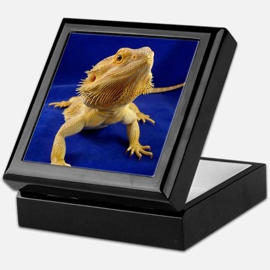 Bearded Dragon Keepsake Box