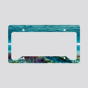 Humpback Whale License Plate Holder