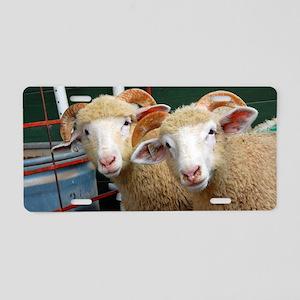 Inquisitive horned ewe lamb Aluminum License Plate