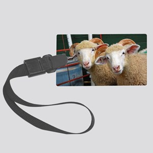 Inquisitive horned ewe lambs Large Luggage Tag
