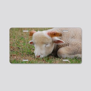 Napping ram lamb Aluminum License Plate