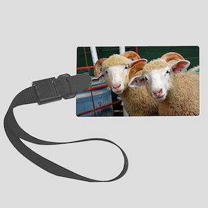 Inquisitive ewe lambs Large Large Luggage Tag