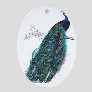 Vintage peacock Oval Ornament
