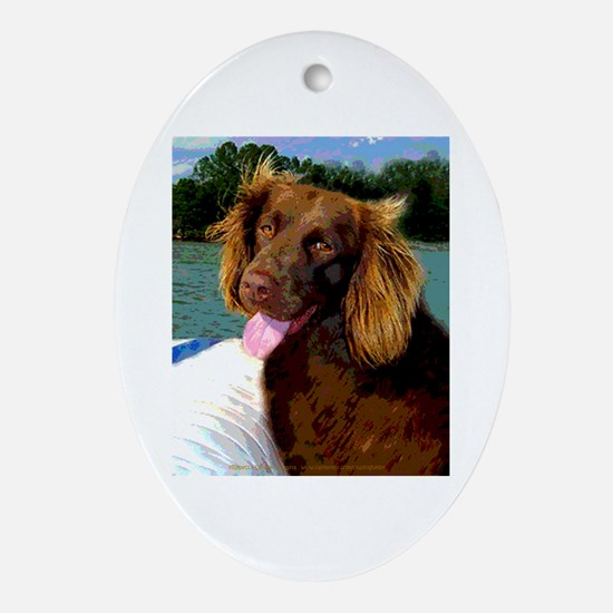 Boykin Spaniel on Board Oval Ornament