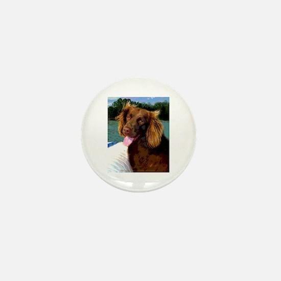 Boykin Spaniel on Board Mini Button