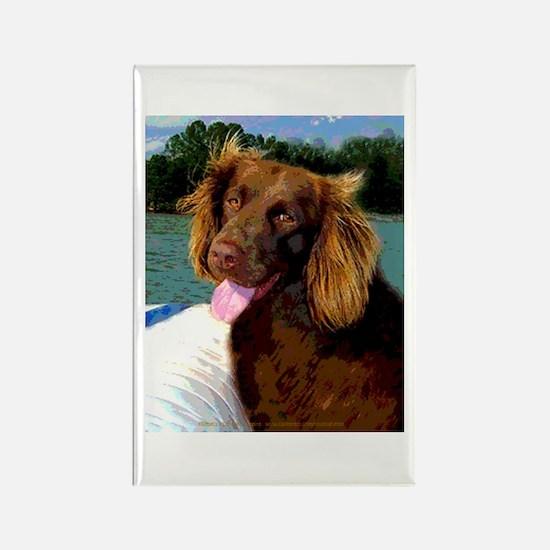 Boykin Spaniel on Board Rectangle Magnet (100 pack