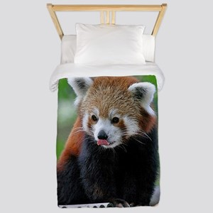 Red Panda Christmas Card Twin Duvet
