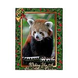Red panda Twin