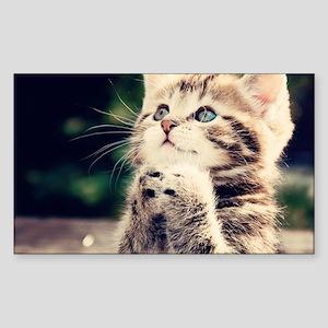 Cat Praying Sticker (Rectangle)