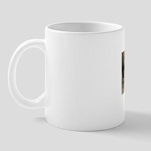 carlsbad1btran Mug