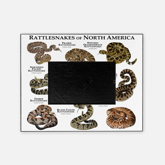 Rattlesnakes of North America Picture Frame