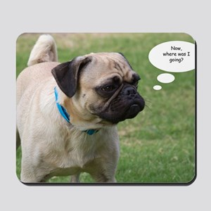 Pug, Now Where Was I Going Birthday Card Mousepad