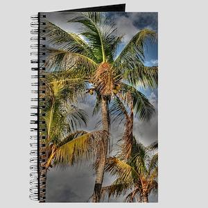 Key Largo Journal