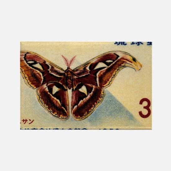 1959 Ryukyu Islands Atlas Moth Po Rectangle Magnet