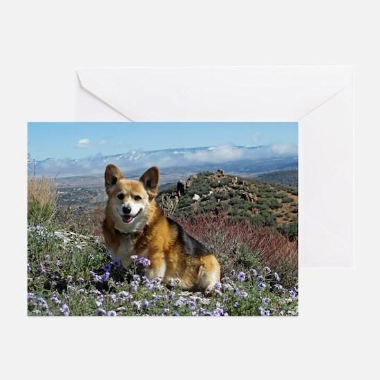 2014 Dog Dayz Greeting Cards (Pk of 10)