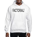 Factorial! Geeky Math Humor Hooded Sweatshirt