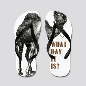 Do You Know What Day It Is Flip Flops