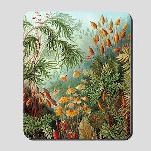 Nature Scene Art Mousepad