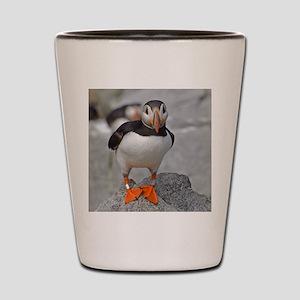 temp_canvas_messenger_bag Shot Glass