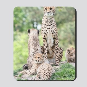 Cheetah 003 Mousepad