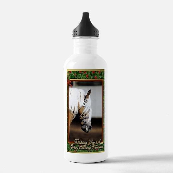 Haflinger Horse Christ Water Bottle