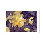 Moonlight Daffodils Watercolor Print 11x17