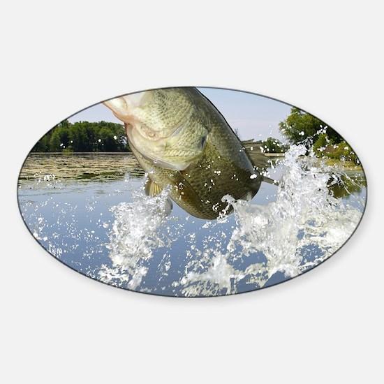 Miss Bass Sticker (Oval)