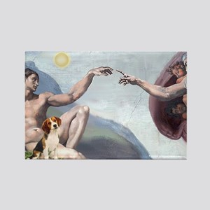 Creation of the Beagle Rectangle Magnet