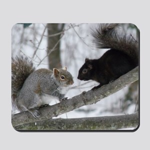 Black Squirrel Mousepad