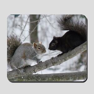Black Squirrel Mousepad