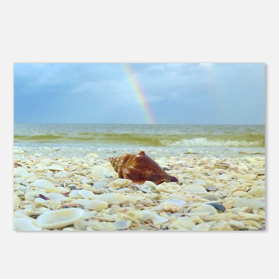Sanibel Seashells Under T Postcards (Package of 8)