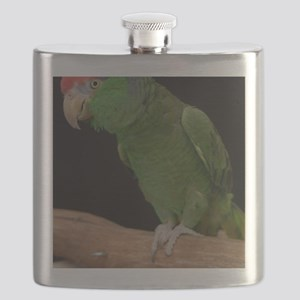 mexican redhead amazon Flask