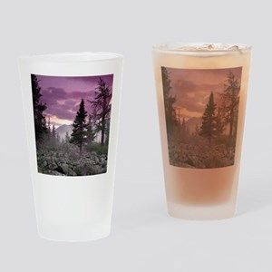 Beautiful Forest Landscape Drinking Glass