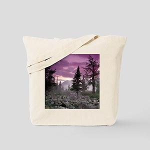 Beautiful Forest Landscape Tote Bag