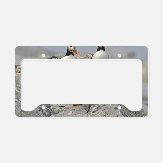 9x12_print  9 License Plate Holder