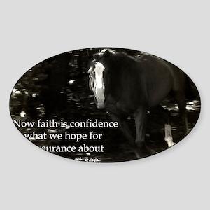 Mattew 11:6 Faith Sticker (Oval)