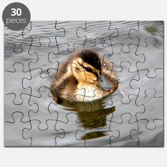 Baby Fuzz Puzzle
