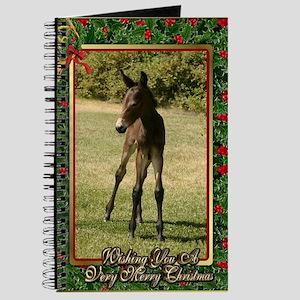 Mule Christmas Journal