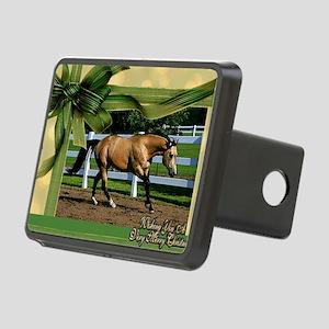 Buckskin Quarter Horse Chr Rectangular Hitch Cover