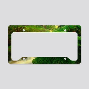 Stream in the forest License Plate Holder