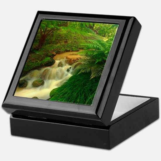 Stream in the forest Keepsake Box