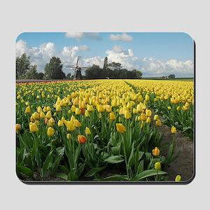 Dutch Windmill and Yellow Tulips Field i Mousepad