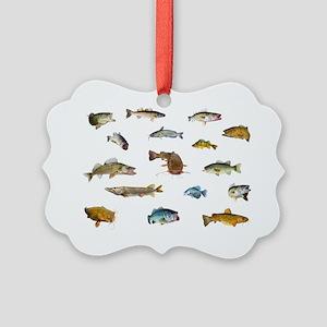 All fish 3 Picture Ornament