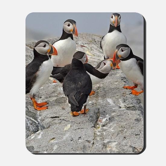 temp_ipad2_folio_cover 8 Mousepad